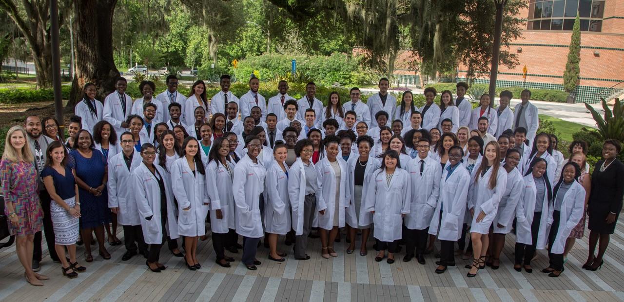 Uf Summer 2020.Summer Health Professions Education Program Medicine